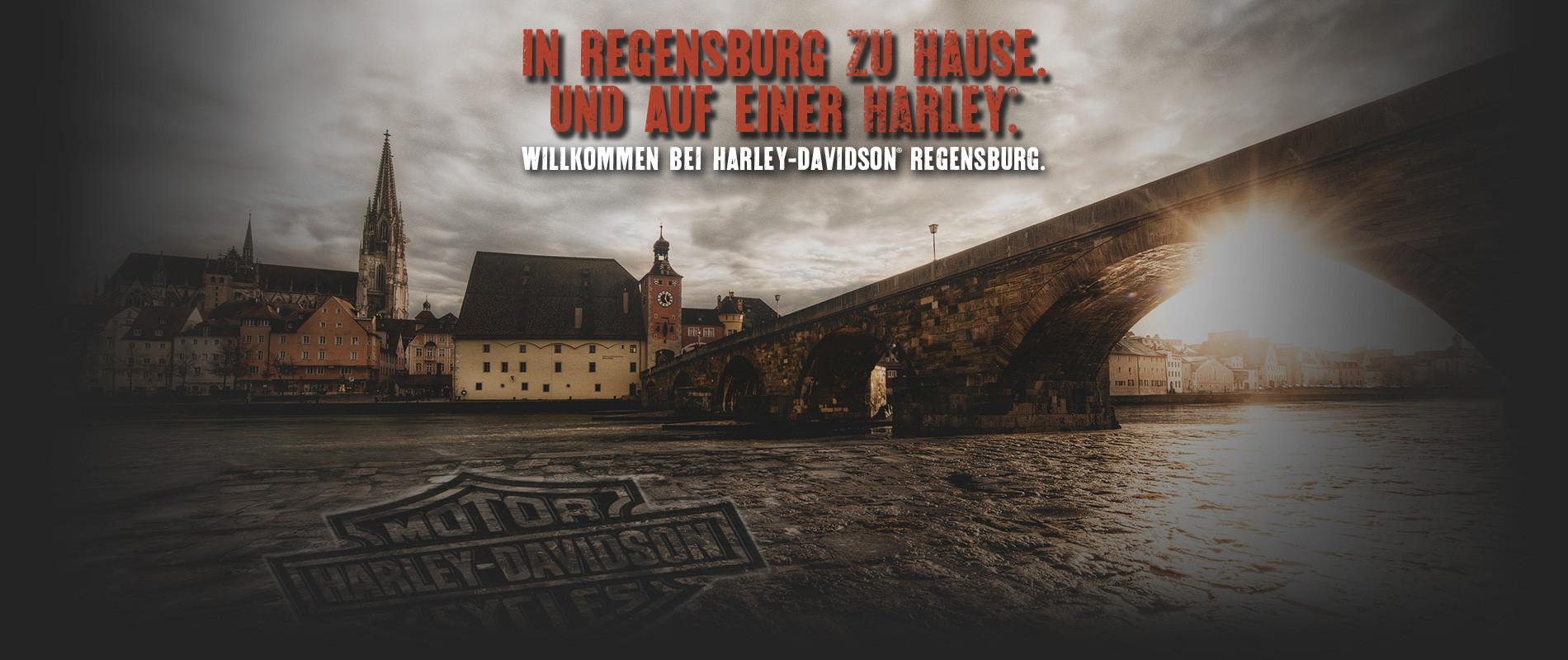 HD_Regensburg_Billboard_Wiedereroeffnung3_2015