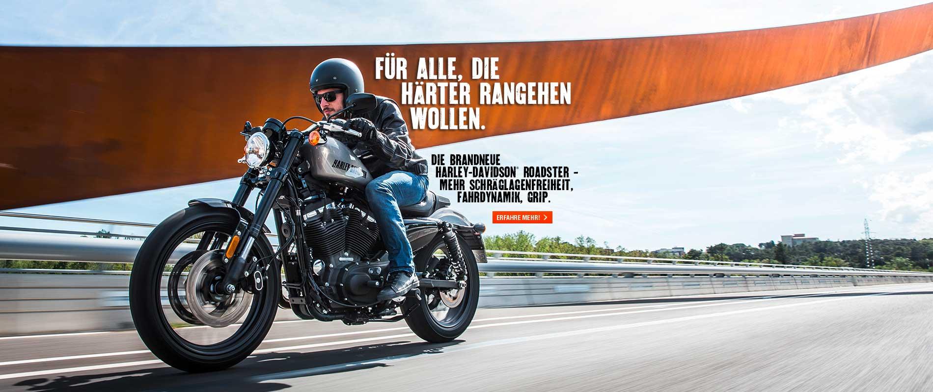 HD_Regensburg_Billboards_Roadsterkl