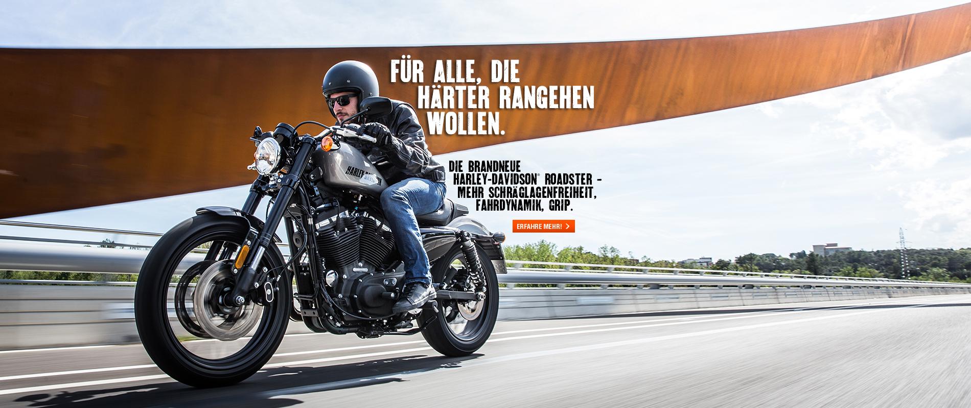 Regensburg_Billboards_Roadster