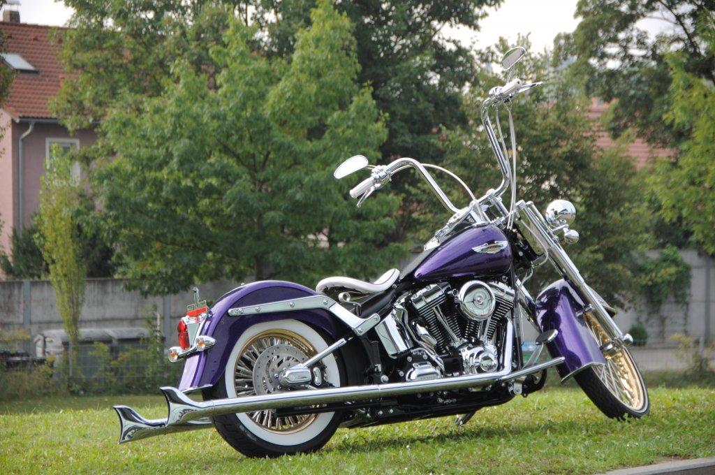 Harley Softail Parts