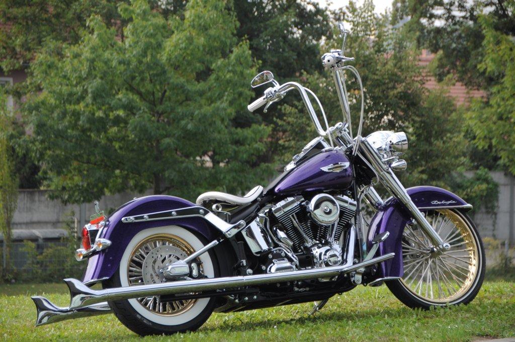 Harley Davidson Heritage Softail Parts