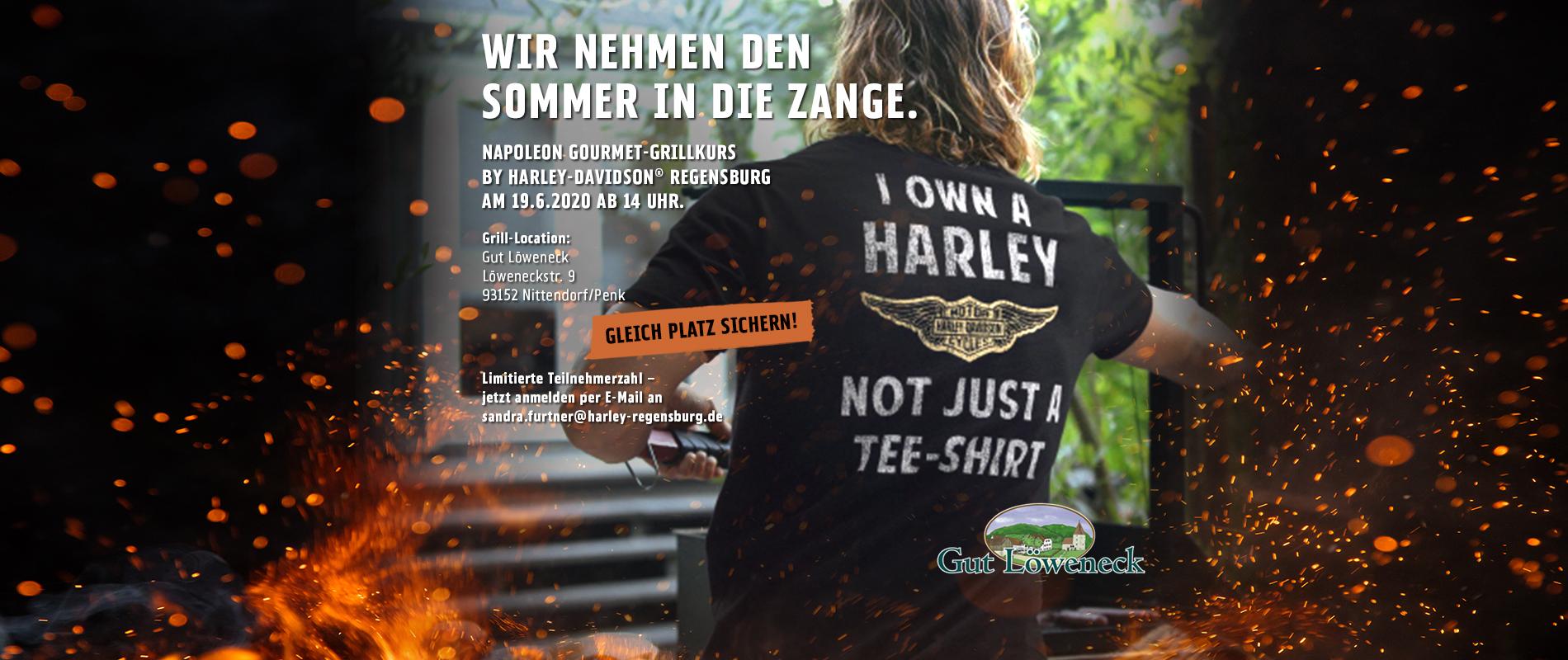 HD_RegSchwarz_Billboards_Grillen_2019_Regensburg